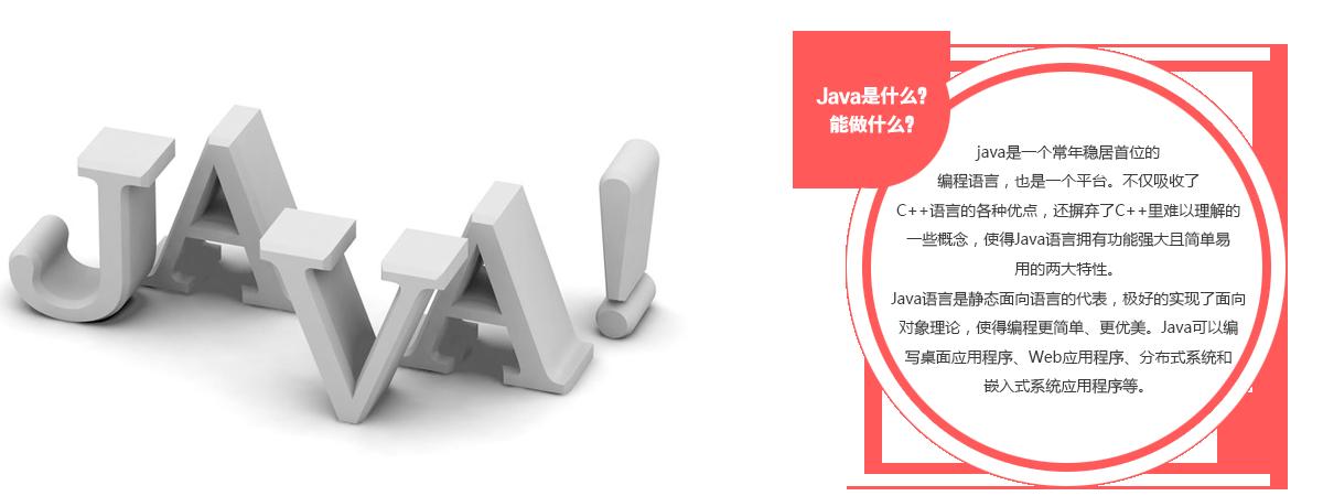 Java依旧是编程语言的霸主